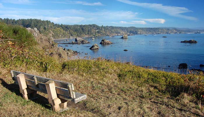 [Photo of bench and Trinidad Bay]